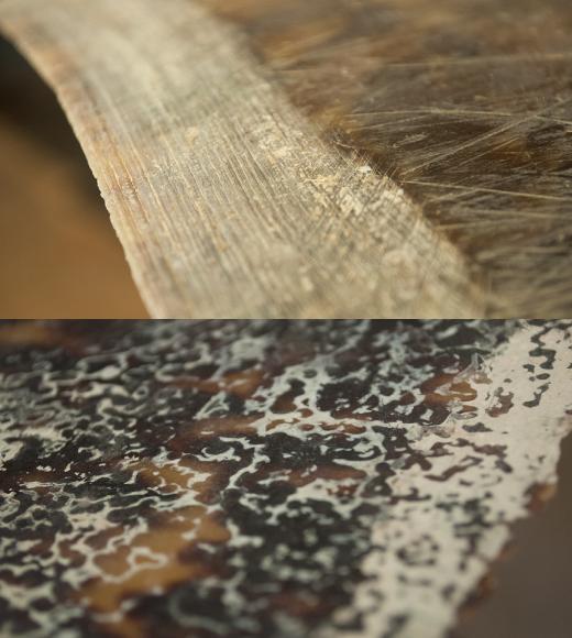 (上)甲羅にも年輪の様な成長の後が見られる。(下)甲羅の内側には波の様な自然の模様が表れている。